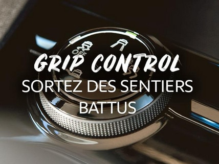 /image/83/2/peugeot-dakar-usp-grip-control-fr.362832.jpg