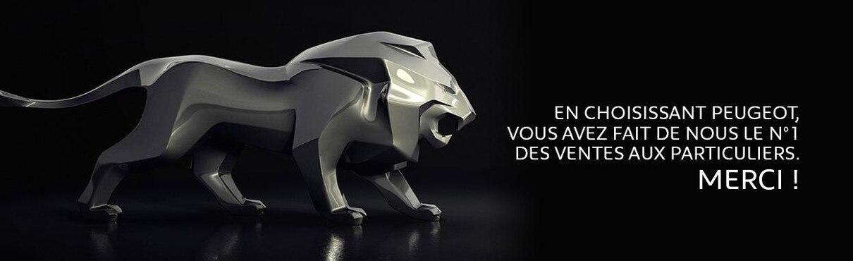Lion ODM